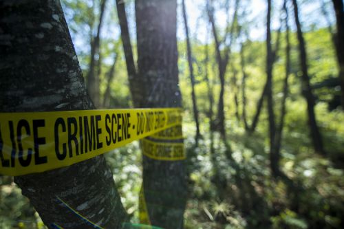 Man shot dead while camping with two young daughters