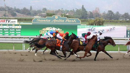Third horse in three days dies at Santa Anita Park