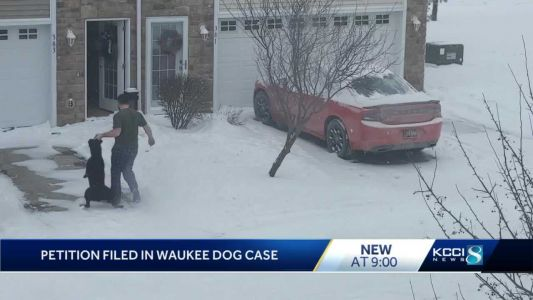 Iowa man relinquishes rights to dog after neighbor captures video of him dragging pet