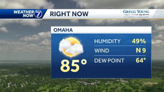 Another comfortable summer afternoon, staying dry