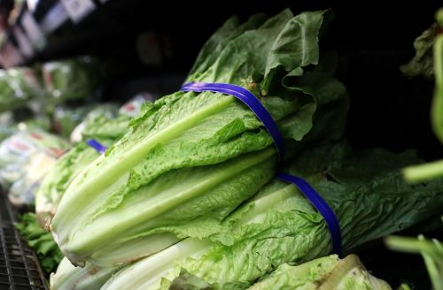 CDC warns against eating any type of romaine lettuce due to health risk