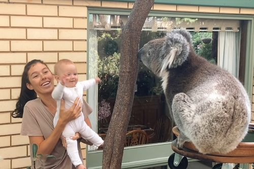 Baby seeing koala for the first time is un-bear-ably cute