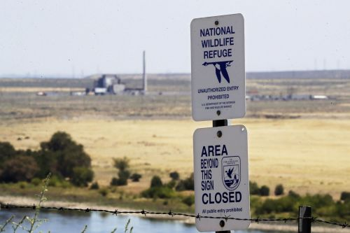 Wildlife flourishing at former weapons testing sites