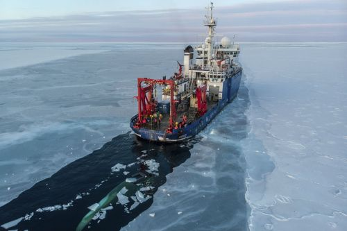 Arctic sea ice hits lowest level on record