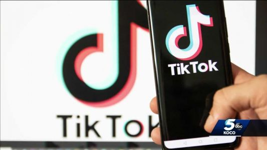 Trump orders Chinese owner of TikTok to sell US assets