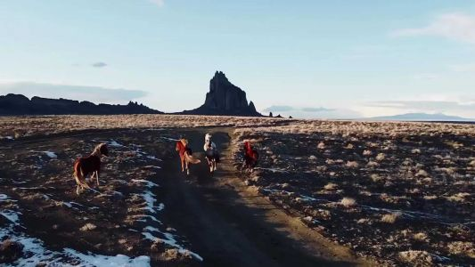 Wild horses captured in drone footage over Shiprock