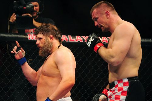 Mirko Cro Cop vs. Roy Nelson rematch rescheduled for Bellator 217 in February