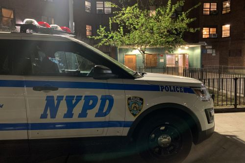Lower East Side man to cops: 'I just murdered my brother'