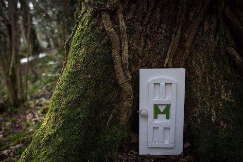 Charming 'fairy doors' open hearts in California neighborhood