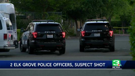 Officers shoot each other in the leg while apprehending burglary suspect
