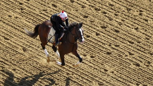Preakness Stakes 2019: War of Will wins 144th running of the race