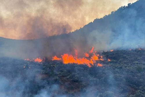 Colorado agricultural burn turns into almost 900-acre wildfire