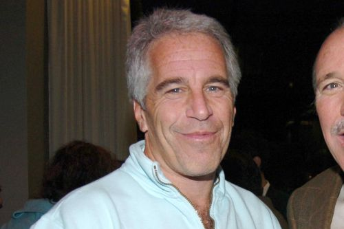 Jeffrey Epstein's mysterious wealth could be explained by a ponzi scheme
