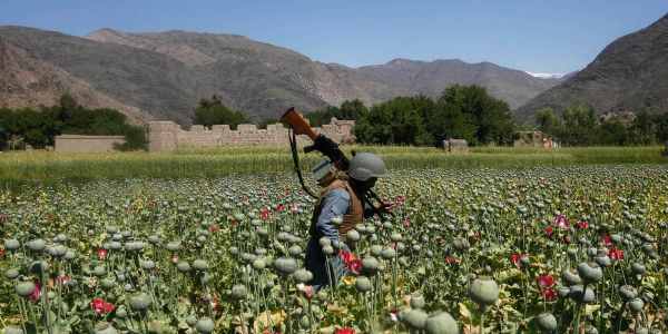 The war on drugs in Afghanistan 'has just been a total failure,' the US's top watchdog there says