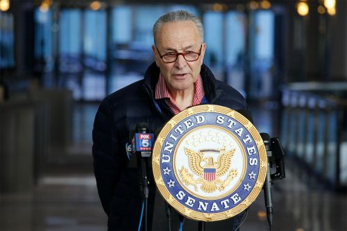 Schumer says Democrats ready to use reconciliation to pass COVID-19 relief