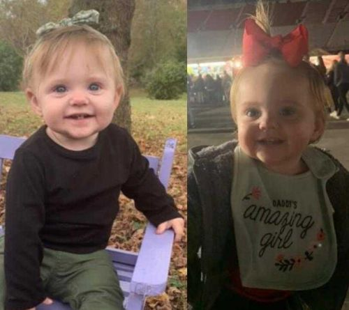 Search underway for missing Tennessee toddler last seen two months ago