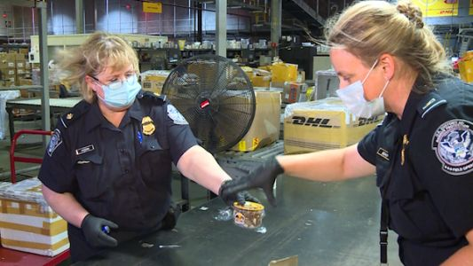 Customs agents at Cincinnati's international airport focused on mysterious Chinese seed packets