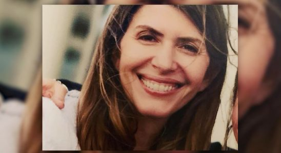 Defense lawyer suggests missing Connecticut mom staged disappearance in 'Gone Girl' fashion