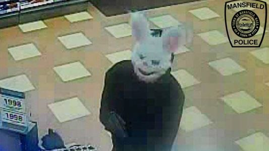 Overnight rain helps robber in rabbit mask evade police search
