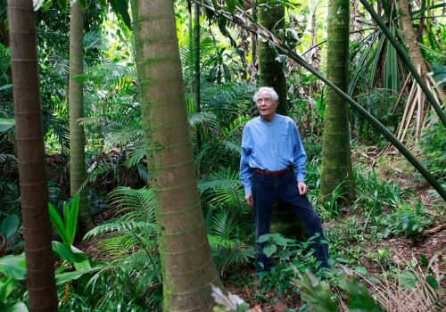 Pittsburgh cousin and author cultivates W.S. Merwin's poetic and green legacy