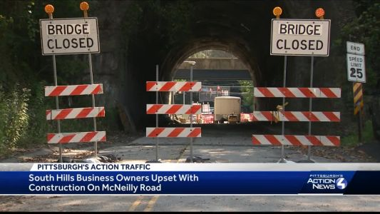 McNeilly Road closure stirs complaints from South Hills business owners