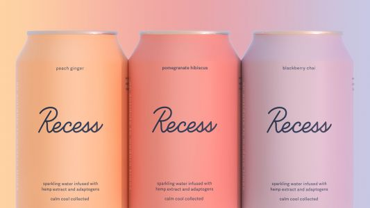 The rise of Recess, a New York startup that could be the White Claw of sparkling CBD drinks - if the country's uneven hemp regulations don't get in the way