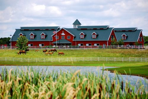 Warm Springs Ranch offering VIP experience for Clydesdale lovers