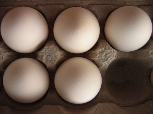 Cage-free egg initiative qualifies for California ballot