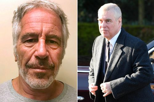 Prince Andrew allegedly pushed for Epstein to get 'favorable' plea deal