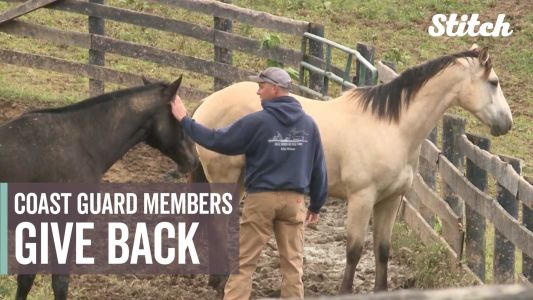 U.S. Coast Guard members give back by volunteering time, labor to equine therapy ranch