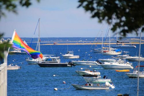 Boat dealers, marina managers report business is booming