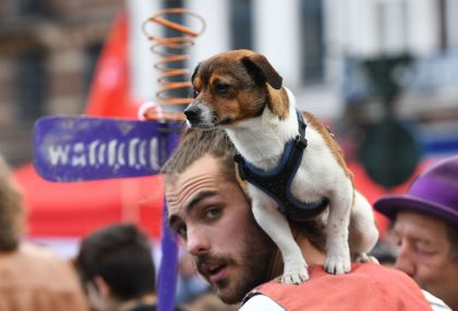 Study: Men's Beards Contain More Germs Than Dog's Fur