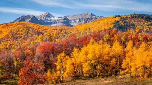 30 stunning pictures of fall foliage