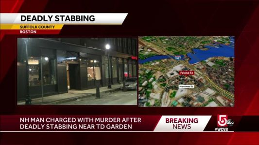 New Hampshire man charged in deadly stabbing near Garden