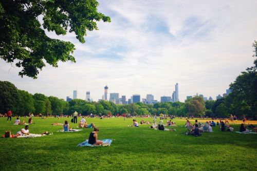 OZY Fest canceled ahead of NYC heat wave