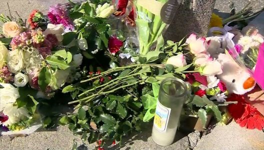 Friends mourn victim of fatal hit-and-run crash