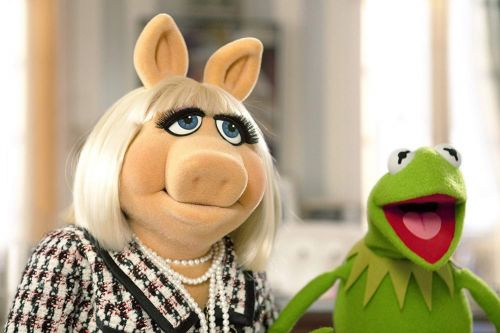 12 surprising things you probably didn't know about 'The Muppets'