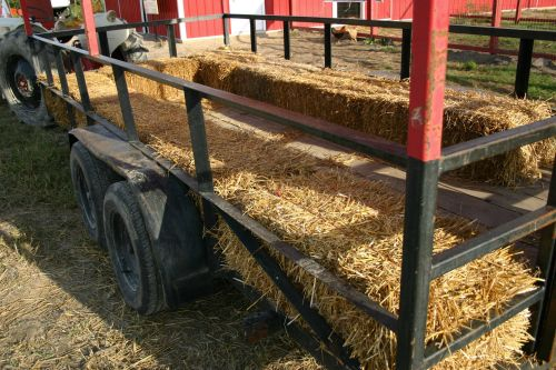 Several rushed to hospitals in Illinois after their hayride was struck by a car