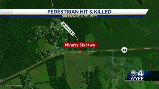 Driver facing charges following deadly hit and run, troopers say