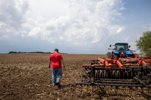 'We just want a fair price': Farmers worry Trump bailout won't be enough
