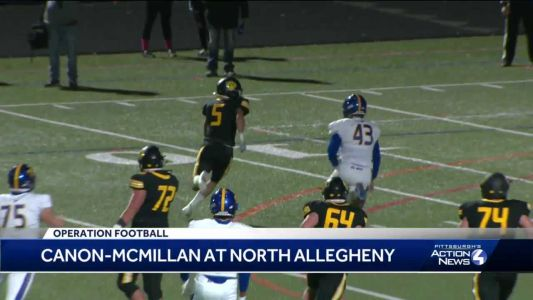 North Allegheny shuts out Canon-McMillan