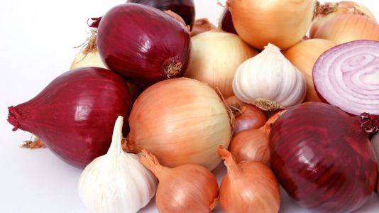 Onions recalled as more than 600 Americans get sick with salmonella