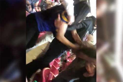 Female fans get into wild brawl at Cardinals-Rams game