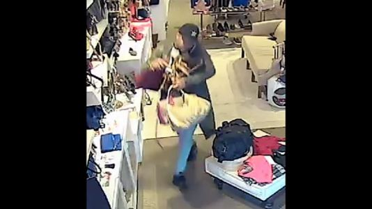 Help identify thief who police say stole over $5,000 worth of designer handbags from Greenville store