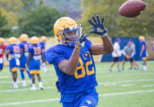 Pitt WR Jared Wayne, a former high school QB, proving himself as true freshman