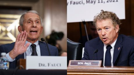 'You don't know what you're talking about!': Fauci LOSES IT with Sen. Rand Paul over Wuhan lab funding accusations