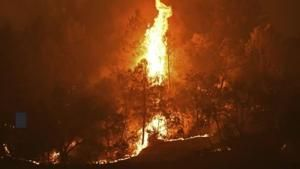 Watch Now: Thousands evacuated in Napa Valley due to wildfires