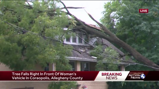 Tree falls on house in Coraopolis, narrowly missing woman's car