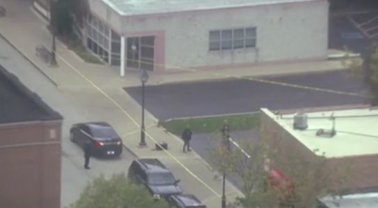 2 in custody after attempted armed robbery at Lombard business