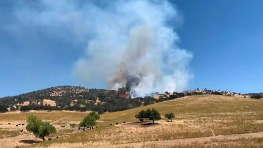 Mariposa County wildfire 40% contained, Cal Fire says